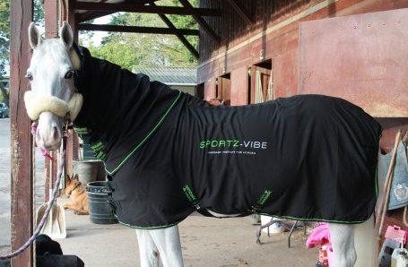 chemise-de-massage-horseware-sportzvibe