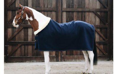 Comment avoir le cheval le plus propre en concours?